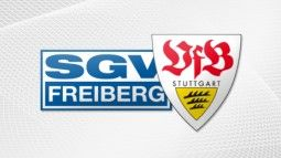 /?proxy=REDAKTION/Logos/Jugend/SGV_Freiberg_-_VfB_255x143.jpg
