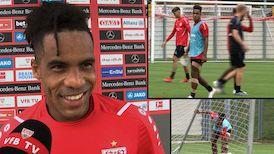 VfB Routinier Daniel Didavi
