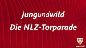 Die NLZ-Torparade: 14. - 15. August